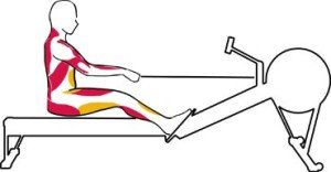 Rowing Machine Abs Drive