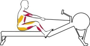 Rowing Machine Abs Recovery